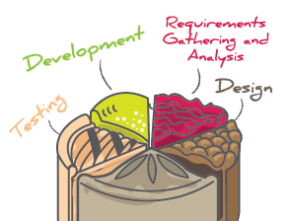 Key Phases of Software Development Projects