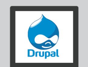 Is Drupal a Secure Solution?
