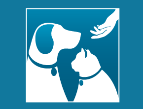 Segue Sponsors AWLA's 20th Annual Walk for the Animals
